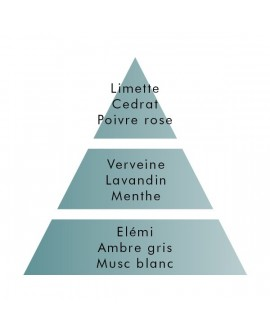 Parfum Berger ZESTE DE VERVEINE 1litre