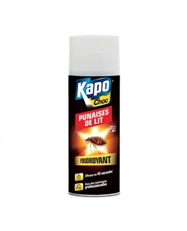 Anti punaises de lit aérosol foudroyant KAPO