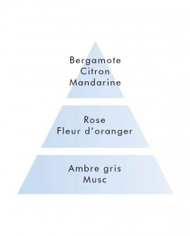 Parfum Mon Premier Pafum 1L.