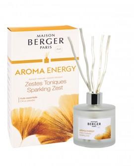 Diffuseur Bouquet Parfumé AROMA Energie Zestes Toniques