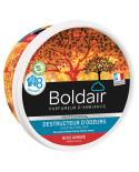 Absorbeur d'odeur gel Boldair bois ambré