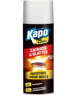 Insecticide aérosol anti-cafards blattes KAPO