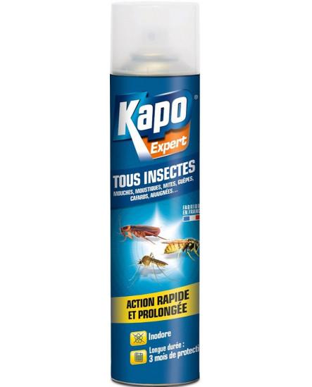 Insecticide aérosol multi-usages 500 ml KAPO
