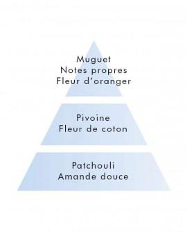 Parfum Lampe Berger Savon d'Autrefois 1L.